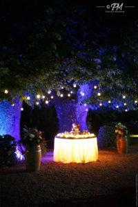 torta di matrimonio sotto albero